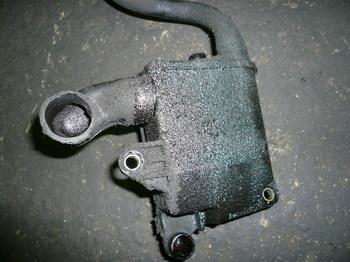 P1040782.JPG